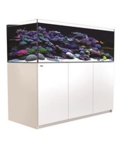 Red Sea Reefer 425 XL White (88 gallons)
