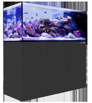 Red Sea Reefer Peninsula 500 Black toronto