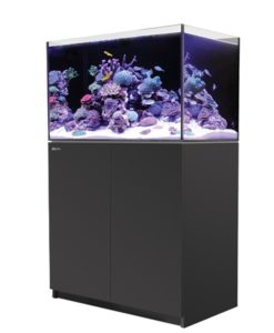 red sea reefer 250 black canada