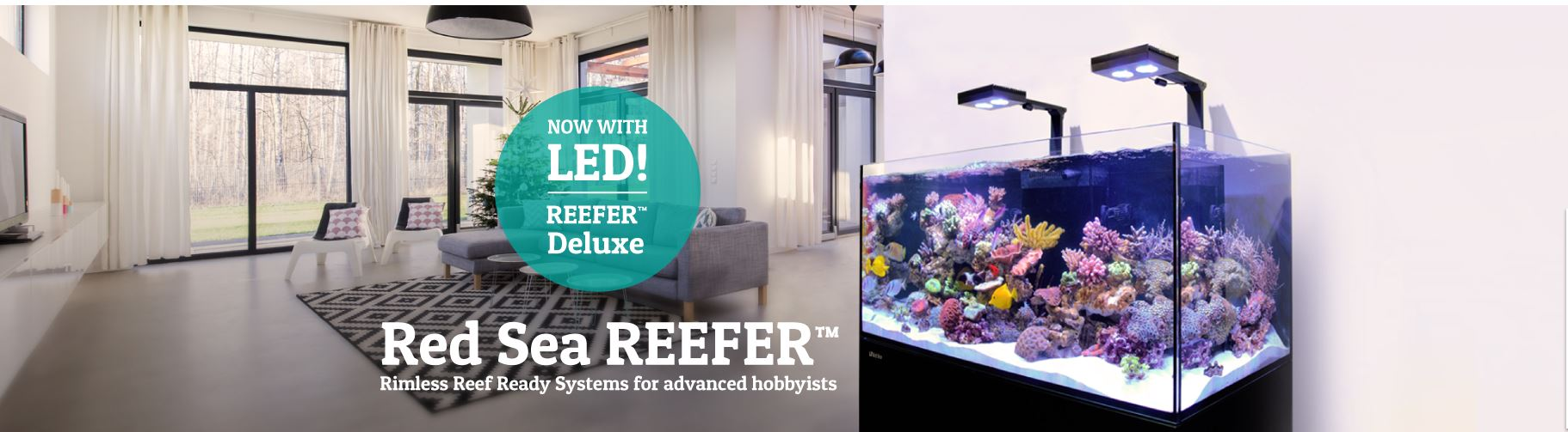 red sea reefer canada