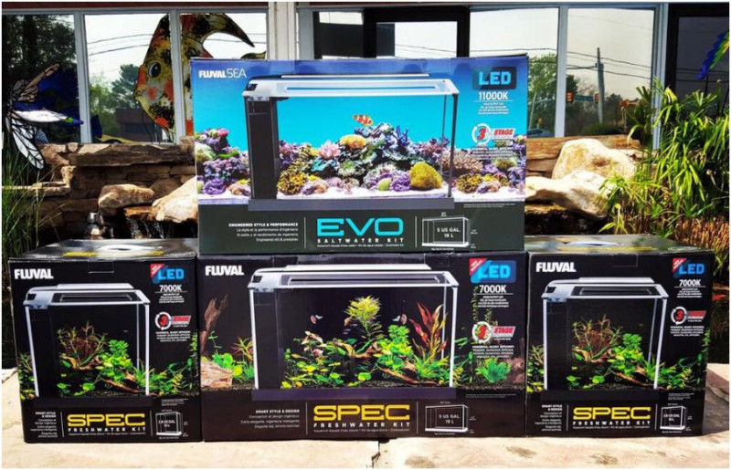 Fluval evo sea aquarium kit