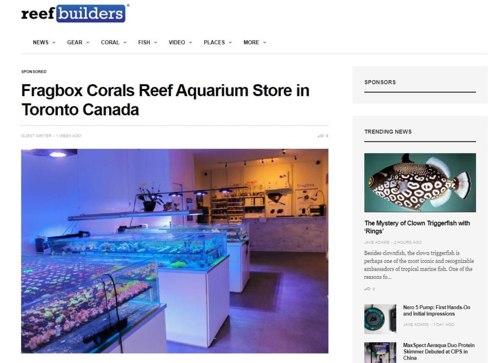 reefbuilders salt water fish store